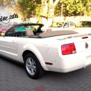 rent_ford_mustang_cabrio_white_2 4