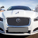 rent_jaguar_XF_white_2